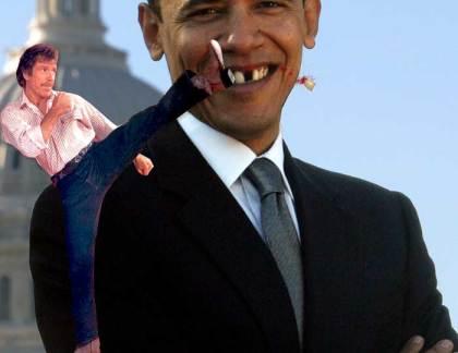 no-tooth-bama